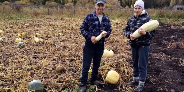 Акция «Соберём урожай»